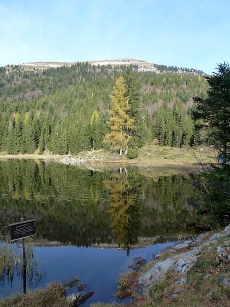 Seewaldsee mit Blick zum Trattberg