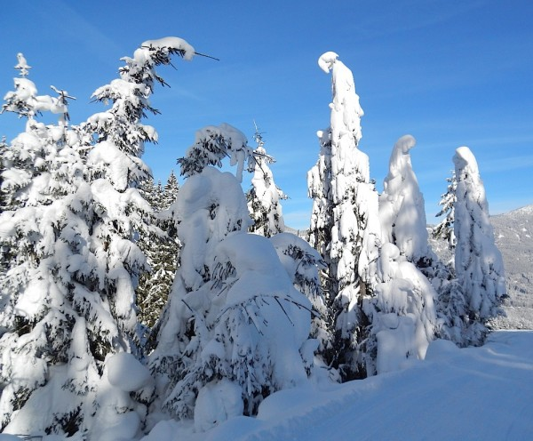 Märchengestalten dick in Schnee gepackt