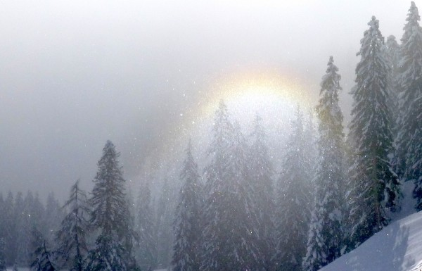 Schneebogen :-)