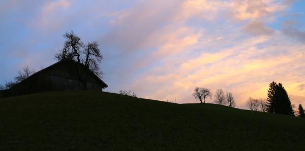 Triebeneggbauer