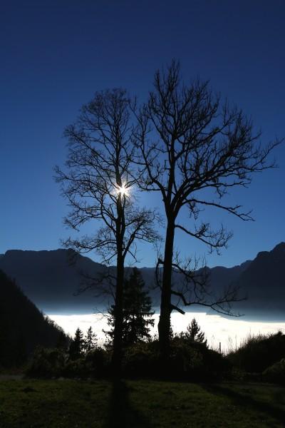Nebel im Salzachtal, auf den Bergen ist es sonnig und warm - und auch Russbach ist Nebelfrei, also, selbst wenn wir nächstes Wochenende beim Adventmarkt keinen Schnee haben - gibt es dafür sicher wunderbares Spätherbstwetter!!!