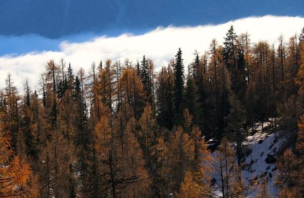 Nebel im Tal - auf den Höhen ist es warm und schön!