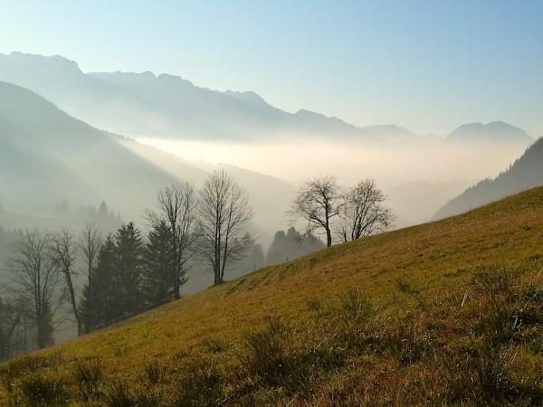 Nebelstimmung überm Lammertal