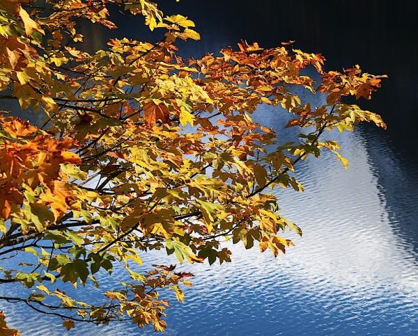 Herbst Dachstein West