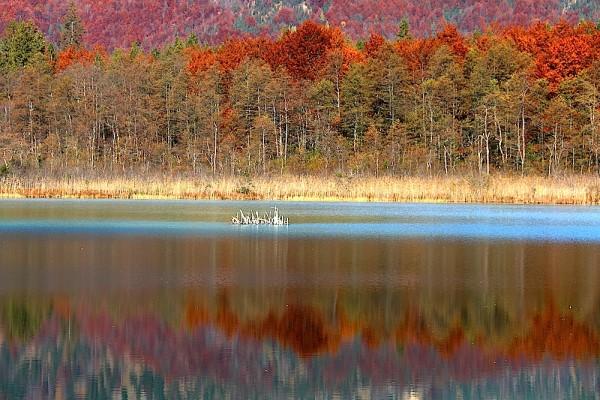 Herbst im Salzkammergut