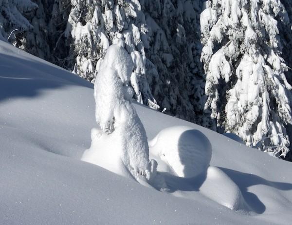 Winterimpressionen Dachstein West