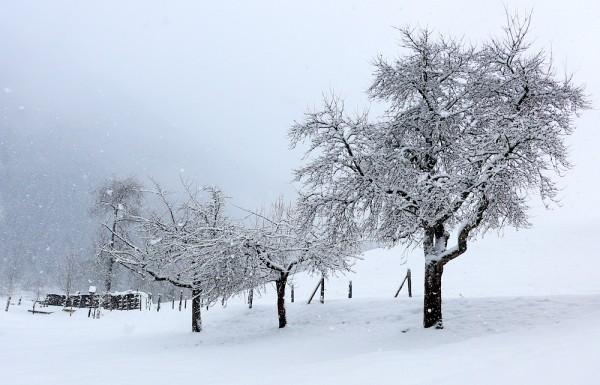 Winter Wetter Russbach
