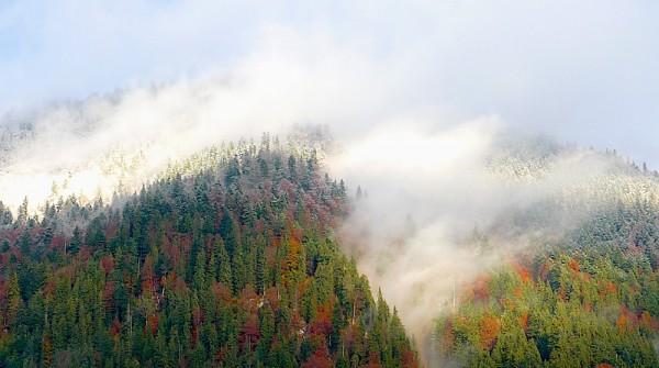 zwischen Herbst und Winter
